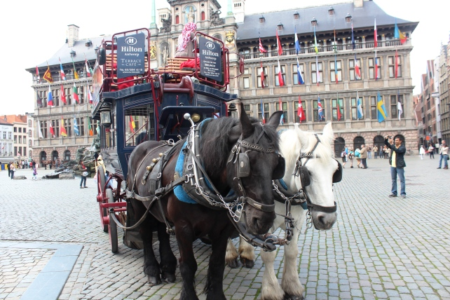 Our double-decker horse carriage in Grote Markt of Antwerp, Belgium