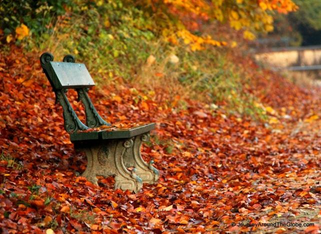 Autumn in full swing in Tervuren Park, Belgium