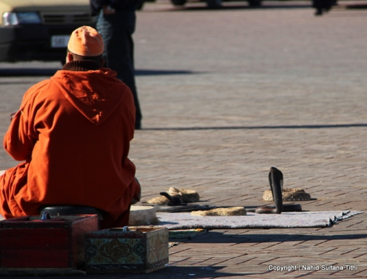 A snake-charmer in Djemma El-Fna, Marrakech