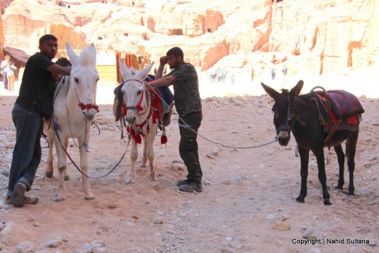 Our guides and rides to the monastery in Petra, Jordan