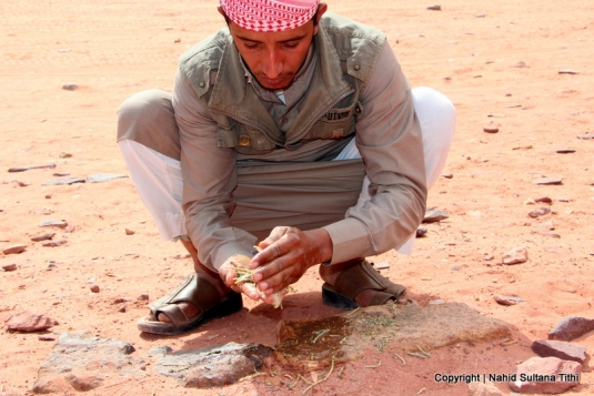Our Bedouin friend is showing how they used to use plants to clean their hands in the old time - Wadi Rum, Jordan