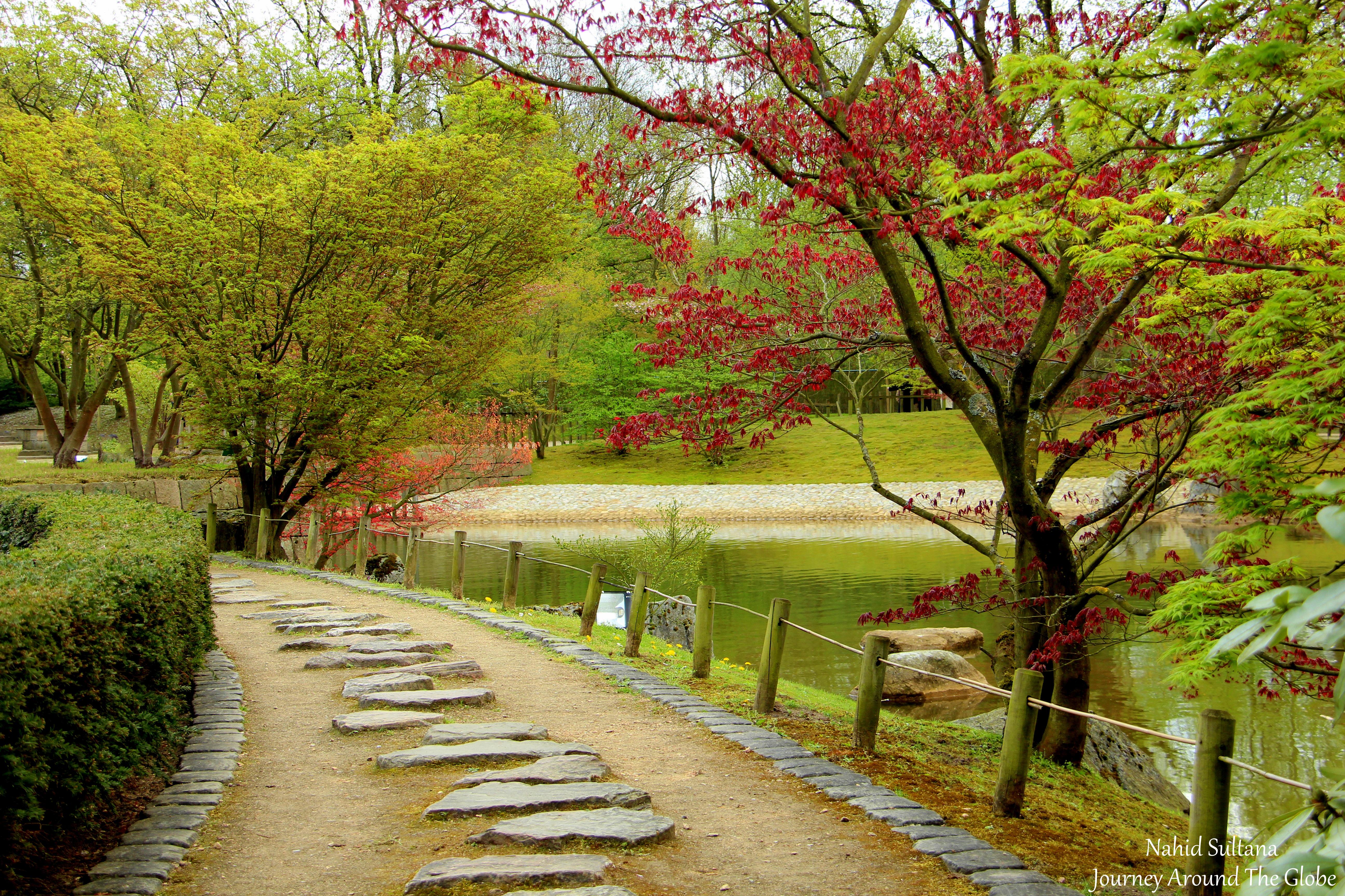 Hasselt japanese garden in hasselt belgium journey for Landscape gardeners
