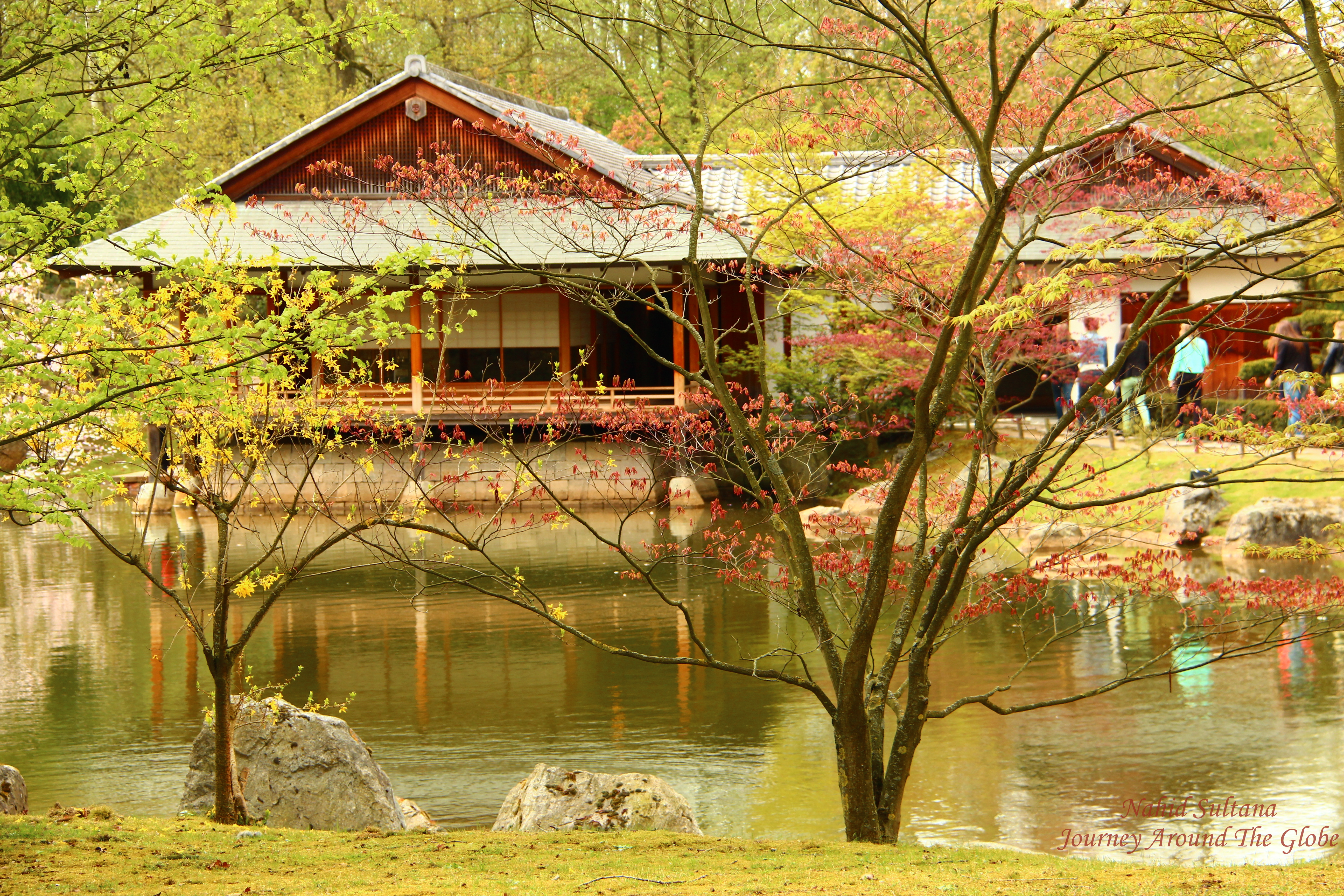 Hasselt Japanese Garden in Hasselt, Belgium | Journey Around The Globe