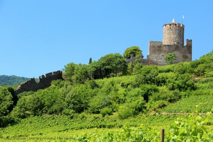 Ruins of Kayserberg Castle in Kayserberg, France