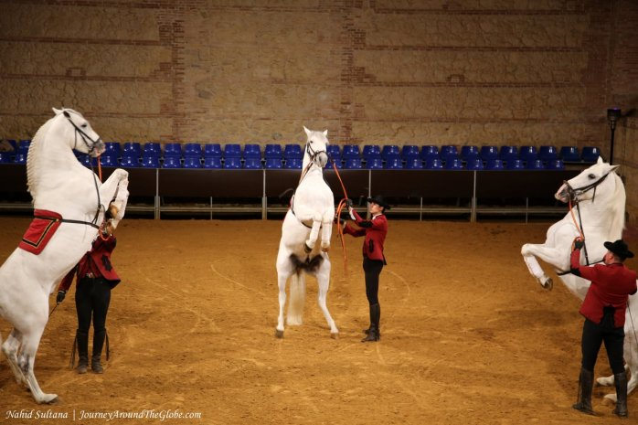 Equestrian show on our 2nd night in Cordoba, Spain