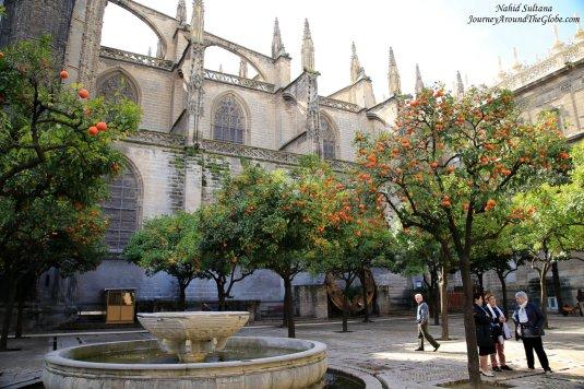 Orange Courtyard of Seville Cathedral