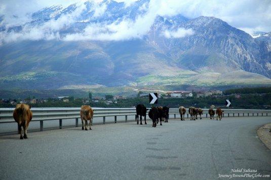 The scenic highway from Tirana, Albania to Skopje, Macedonia (thru Kosovo)