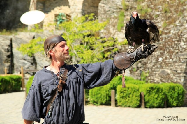 Falcon Show in Chateau de Godfrey in Bouillon, Belgium