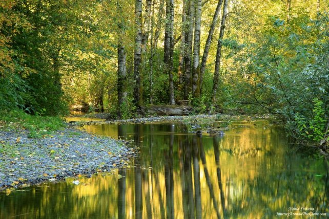 Autumn reflection Multnomah creek opposite of Multnomah Falls in Oregon