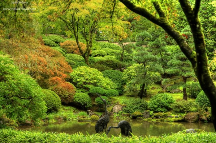 Intimate pond and crane statues in Portland Japanese Garden in Oregon