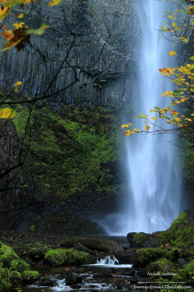 Latourell Falls drops straight down 249 feet from an overhanging basalt cliff...Columbia River Gorge, Oregon