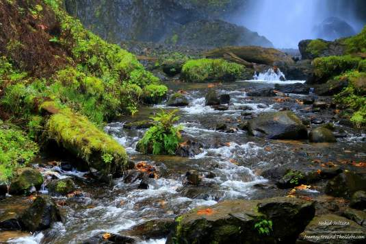 Autumn in Latourell Falls and creek in Oregon