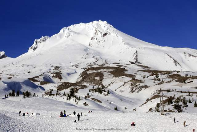 Mt. Hood and its guests