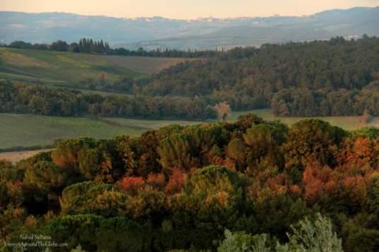 Hillside of Montereggioni in Italy