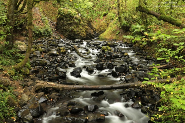 Bridal Veil Creek, a short distance from the famous Multnomah Falls in the gorge