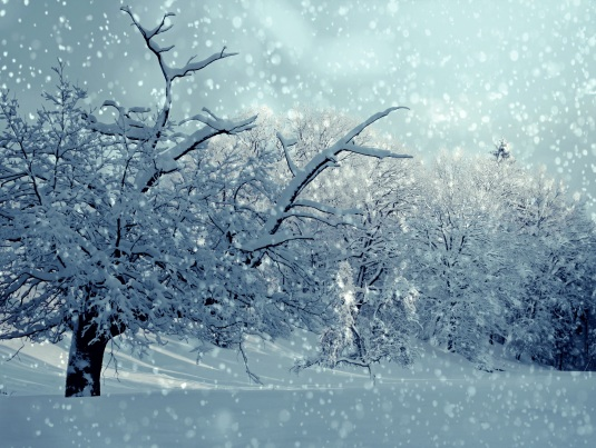 winter-1861704