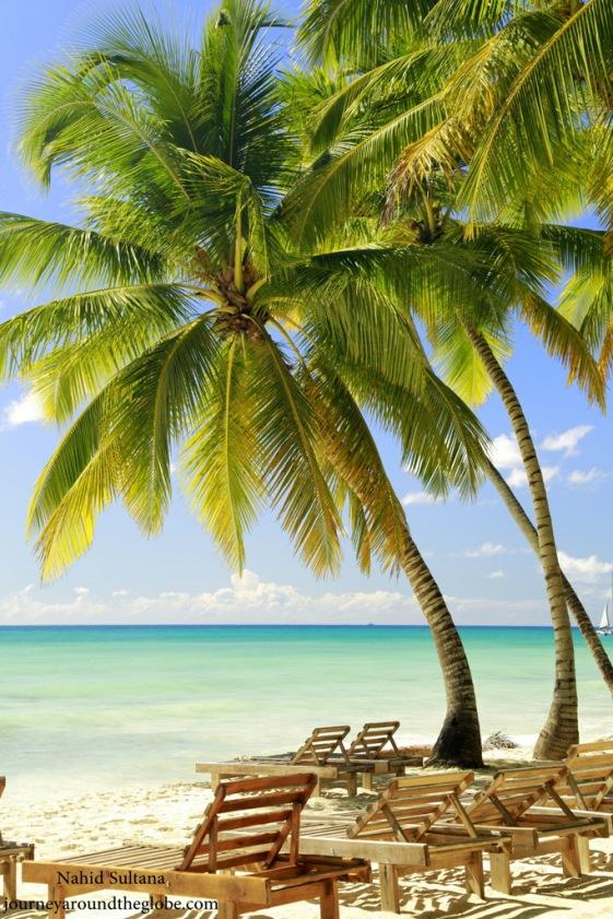 Saona Island in Dominican Republic